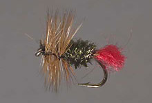red Tag trout fly