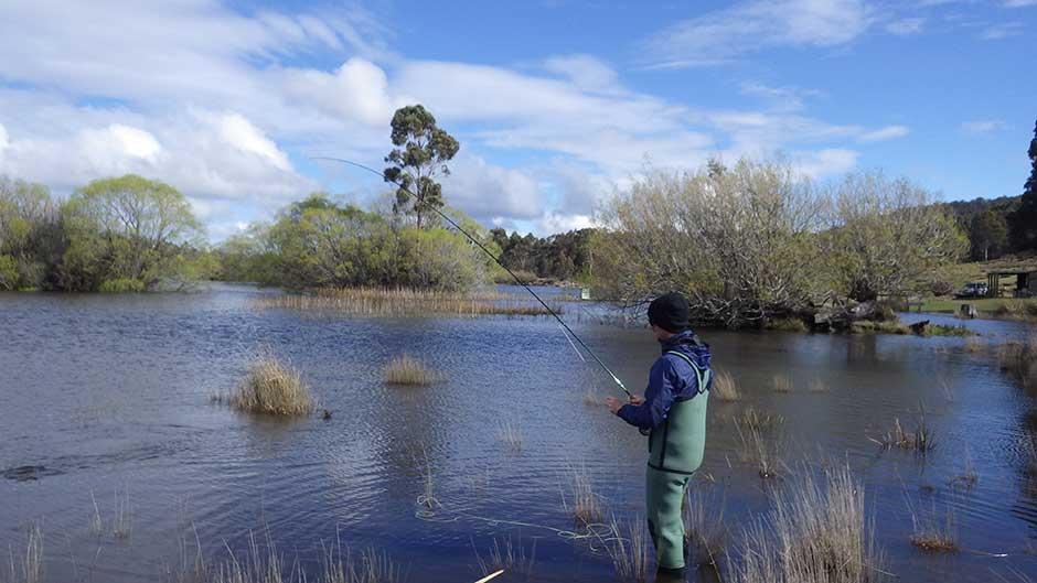 dry fly fishing tasmania australia